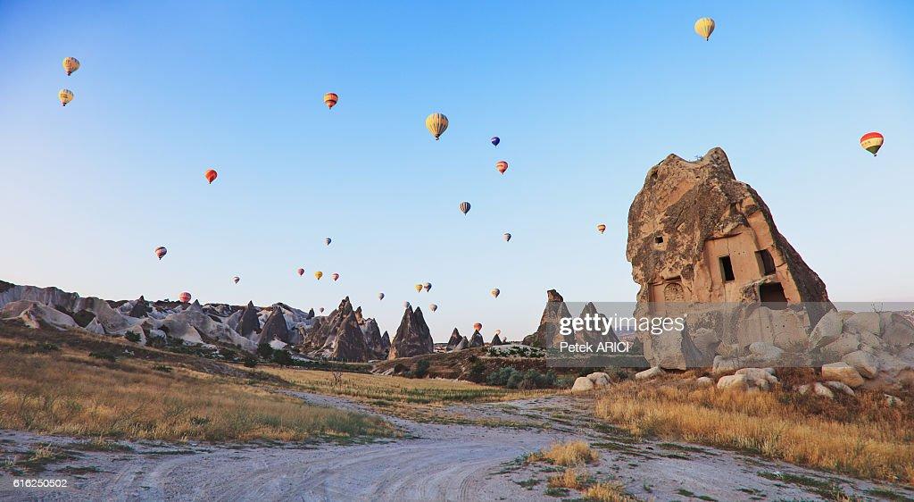 Hot air balloons : Stock Photo