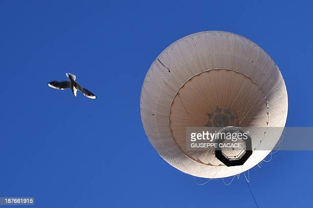A hot air baloon and a seagull fly over Turin on November 11 2013 AFP PHOTO / GIUSEPPE CACACE