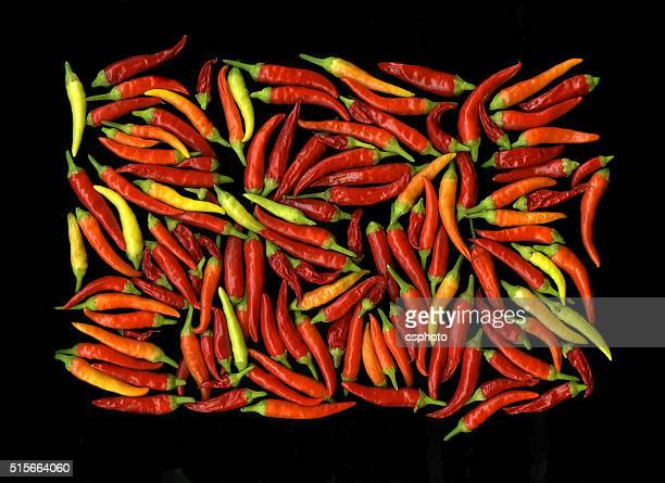 Hot chilli peppers islated on black background