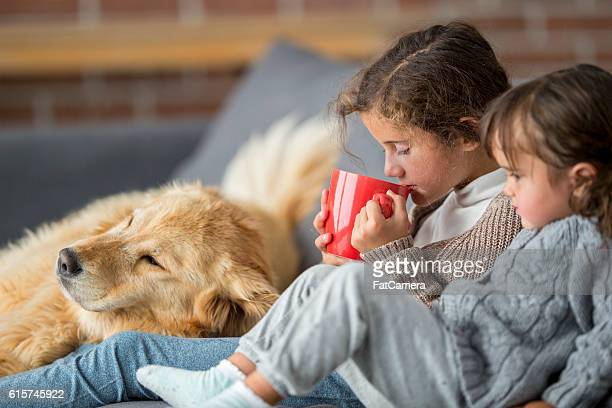 Hot Chocolate and Pet Adoption on Christmas