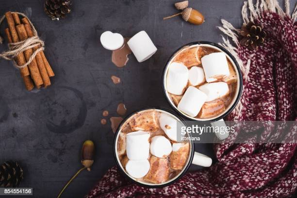 Hot chocolate served in vintage  mugs with marshmallows