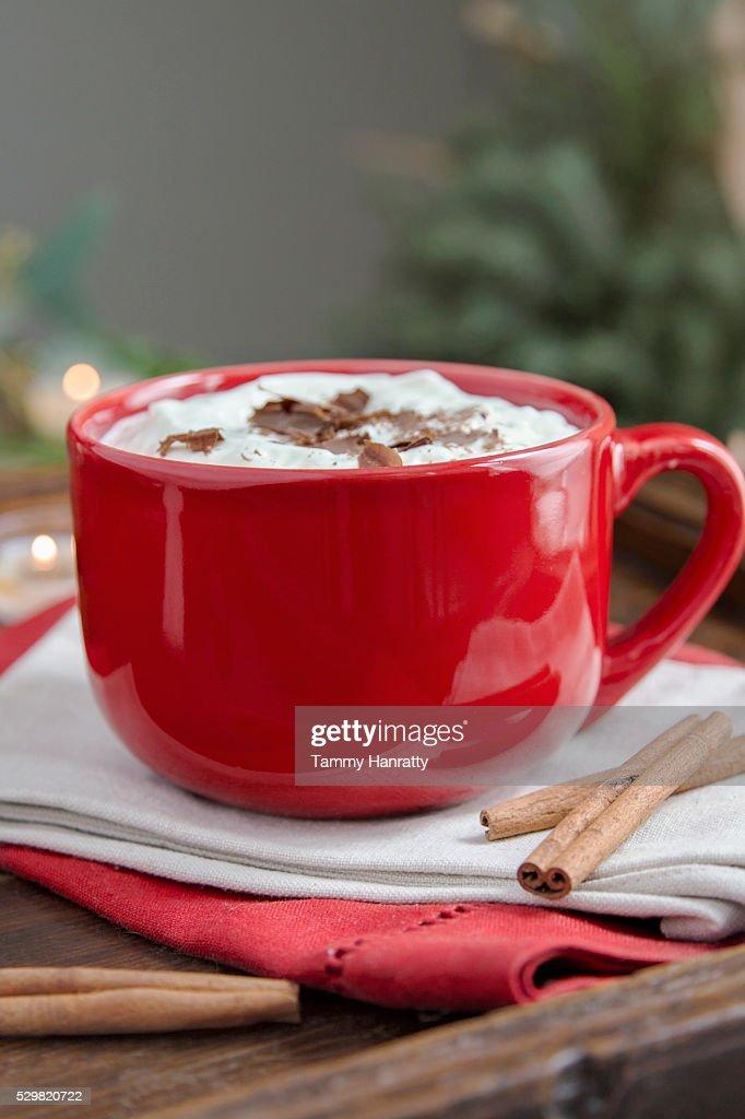 Hot chocolate with cream and cinnamon : Stockfoto