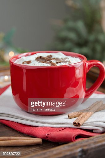 Hot chocolate with cream and cinnamon : Stock-Foto