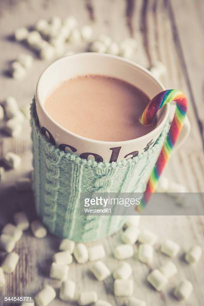 Hot chocolate with marshmallows, cup warmer
