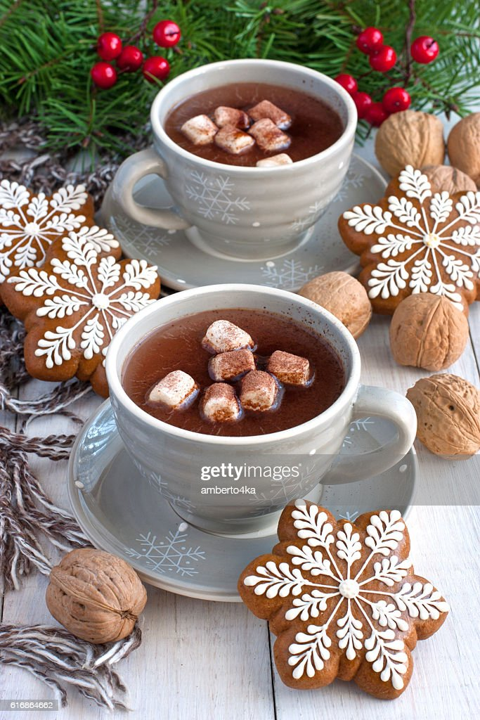 Hot cocoa with marshmallows and gingerbread cookies : Stock Photo