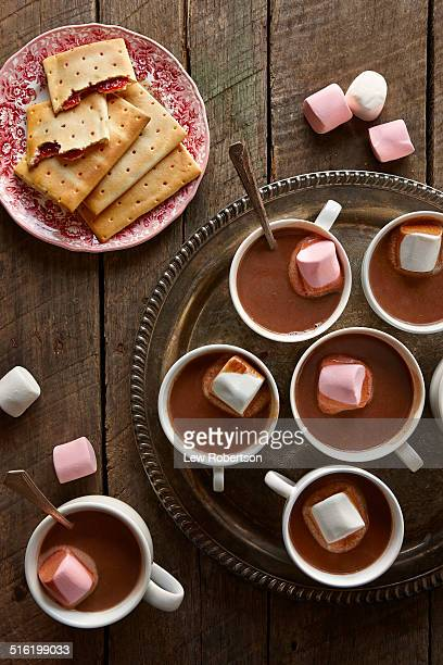 Hot Cocoa with pop tarts