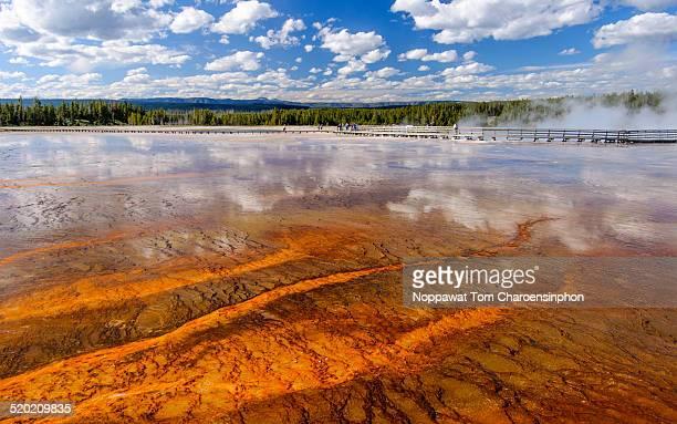Hot Spring Yellowstone