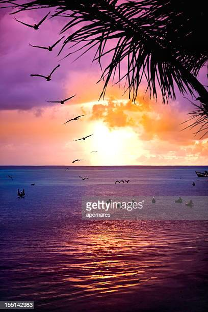 Hot summer sunset at tropical island beach with coconut trees
