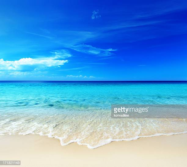 Hot Tropical Sandy Beach - Ocean Shore