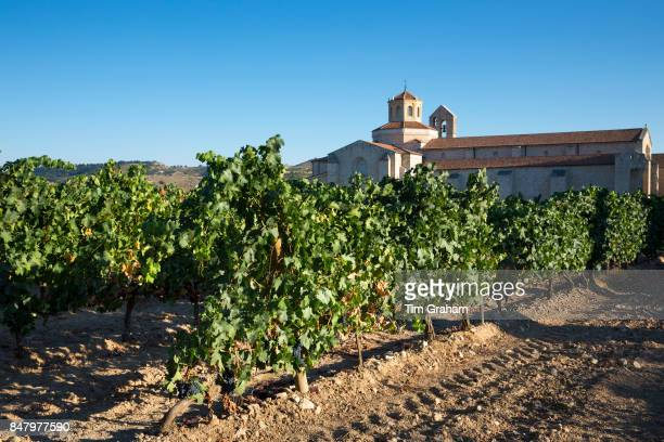 Hotel Castilla Termal Monastery of Valbuena vineyard of Tempranillo grapes ribera del Duero wine production Valladolid Spain'n'n'n