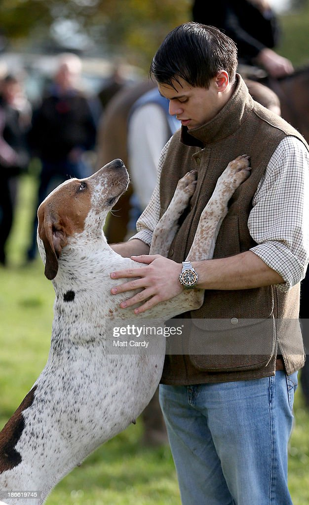A hounds from the Duke of Beaufort's Hunt meets with a supporter at the opening meet of the season at Worcester Lodge on November 2, 2013 near Badminton in Gloucestershire, England. Traditionally the hunting season starts at the beginning of November and although a ban on fox hunting with dogs has been in force since February 2005, many supporters of fox hunting are continuing to call for a repeal of the ban, saying the current law is hard to interpret and enforce.