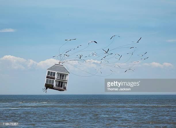 House being carried off by birds
