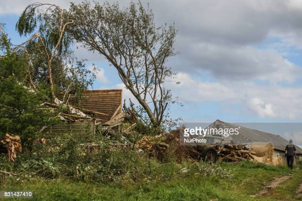 House crushed by falling trees is seen in the Sylczno village northern Poland on 14 August 2017 Storms which on Friday 11th August night and Saturday...