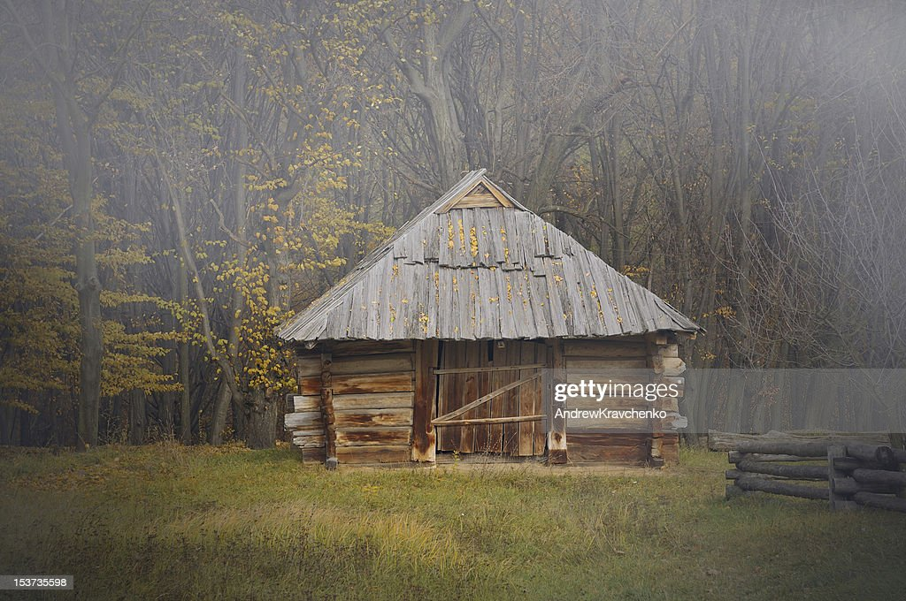 House in forest : Stock Photo