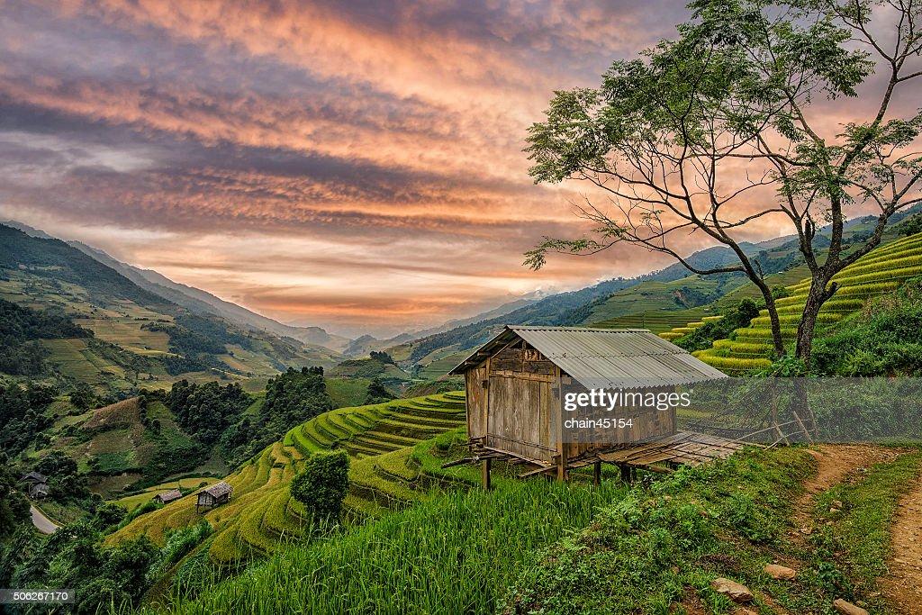 House in rice terrace at the mountain in Asia.
