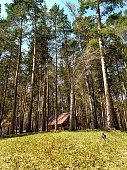 House in the forest of Altai mountain region