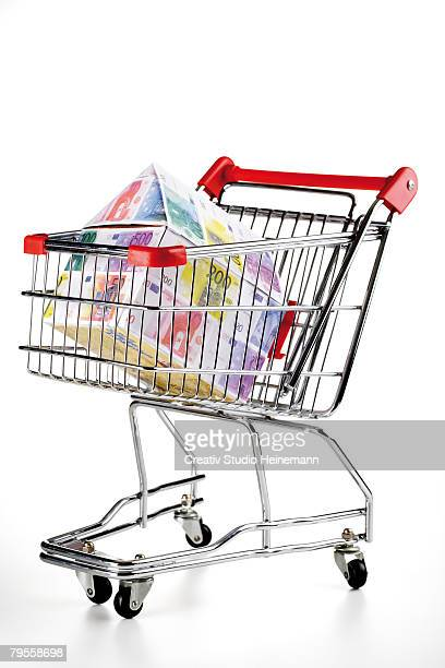House of Euro notes in shopping trolley