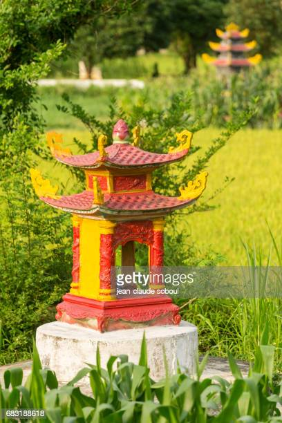 House of spirits in a rice field, in Ninh Binh province (vietnam)