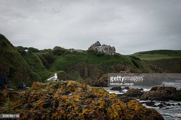 A house on a cliff in St Abbs on the Scottish seaside Views and snapshots from Scotland a country that will be voting a referendum on whether...