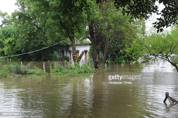 House submerged in water as flood like situation is created in village Pipalkhedi after three sluice gates of the Halali dam some 55KM away from...