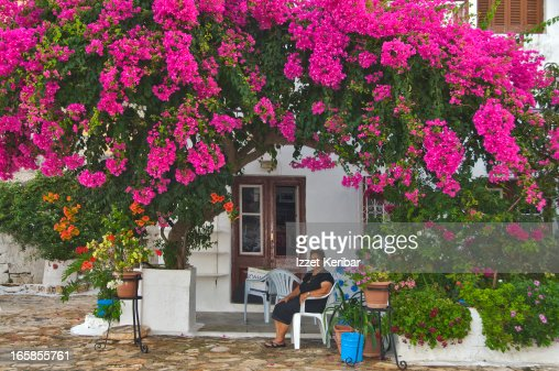 House with floral decoration