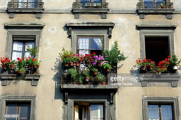 House with flowering balcony in the old town Geneva Switzerland