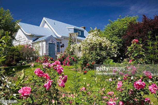 House with garden full of flowers, spring