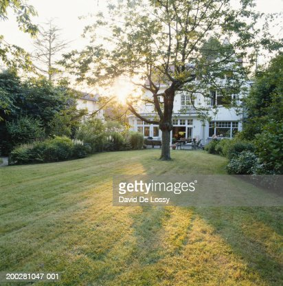 House with lawn : Foto stock