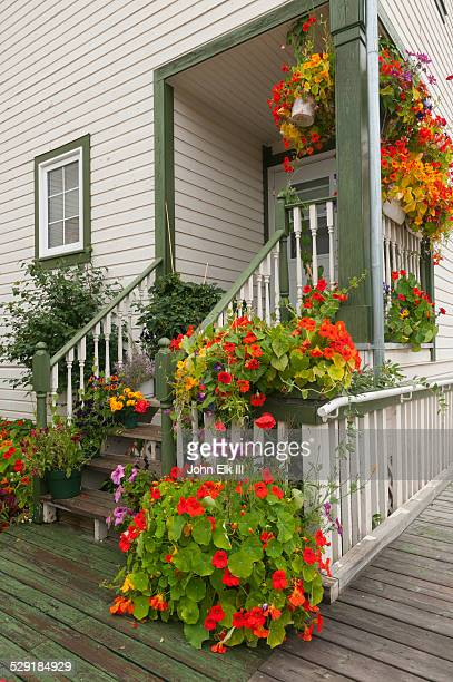 House with nasturtium flowers