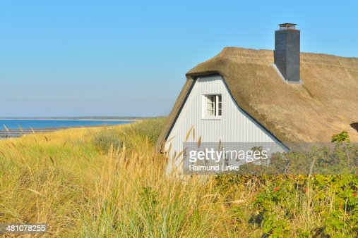 House with Reed Roof
