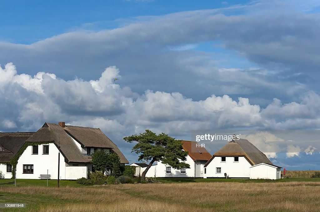 Houses surrounded by meadows in Neuendorf on Hiddensee island, Mecklenburg-Western Pomerania, Germany, Europe