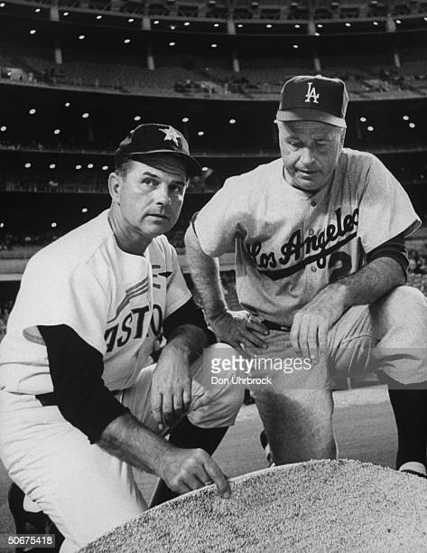 Houston Astros manager Grady Hatton and Los Angeles Dodgers manager Walter Alston inspecting new artificial grass being used for infield of Houston...