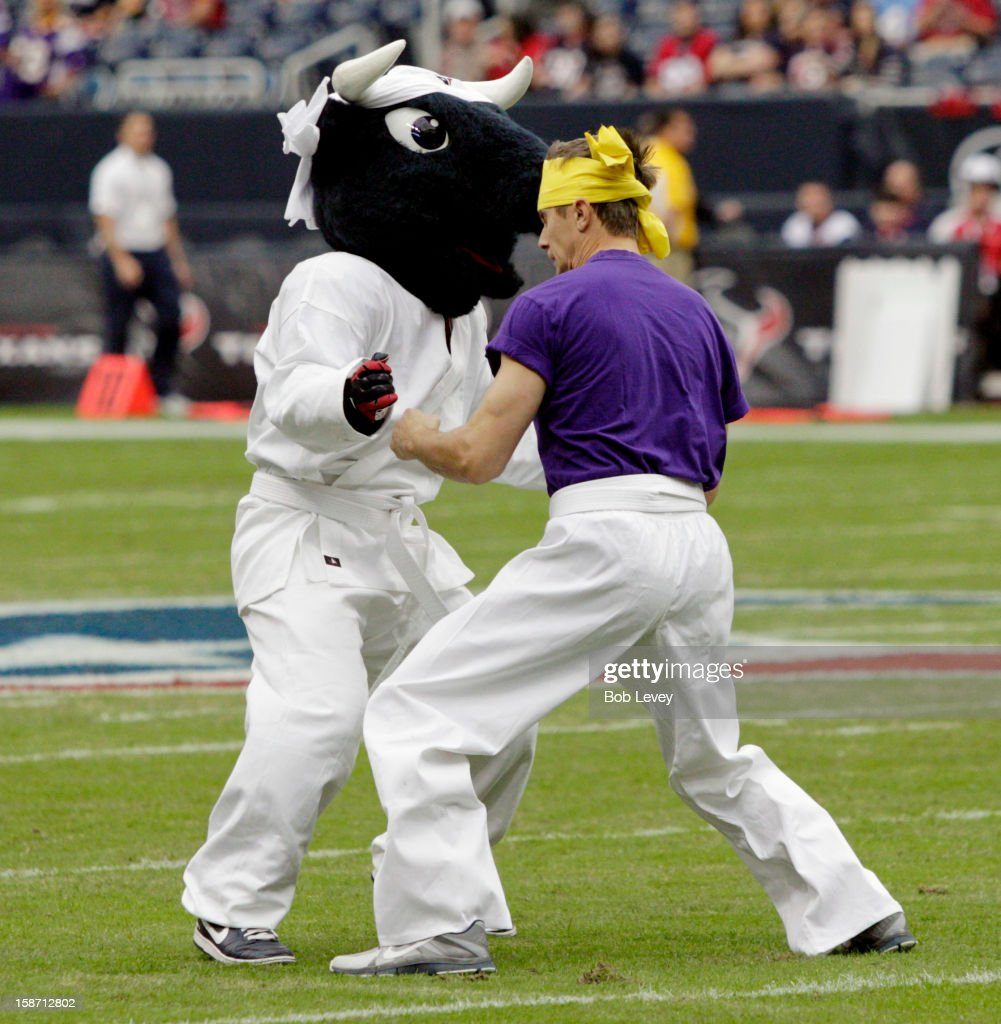 A Houston Texans mascot prepares to do battle with Houston Texans mascot Toro during pre-game activities before the Houston Texans played the Minnesota Vikings at Reliant Stadium on December 23, 2012 in Houston, Texas. Minnesota Vikings defeat the Houston Texans 23-6.