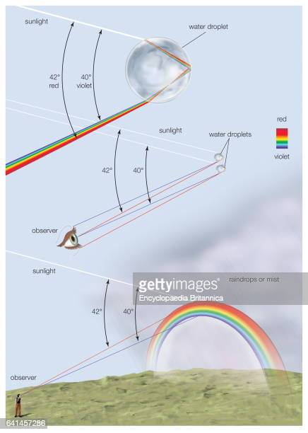 How a rainbow is formed with a diagram of reflection and refraction of sunlight inside a raindrop Visible spectrum visible light atmospheric...
