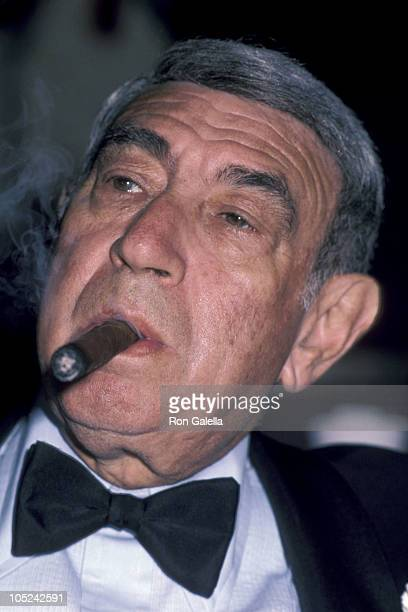Howard Cosell during 9th Annual Sports Awards Dinner at New York Hilton in New York City NY United States