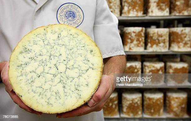Howard Lucas production manager holds a Stilton cheese at the Cropwell Bishop Creamery on November 7 2007 near Nottingham England Stilton cheese...