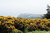 Beautiful landscape Howth, Dublin, Ireland