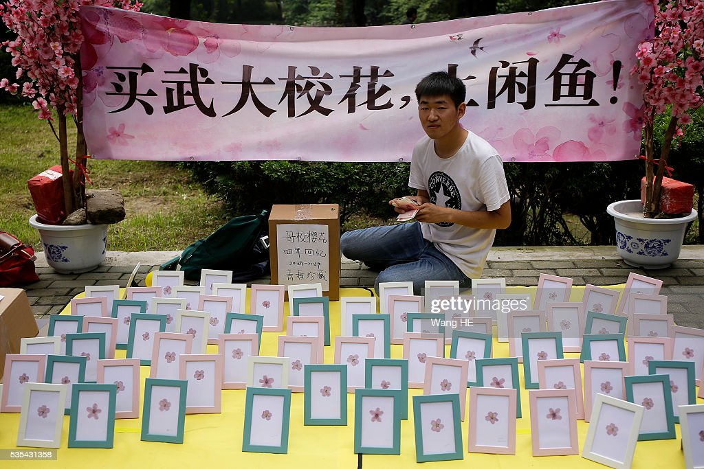 Huanglingxian is a graduate of Wuhan University .He began collecting Sakura Specimen from 2013.Before graduation he began to sell Sakura Specimen.College graduates sell their used textbooks, magazines, CD and other possessions on the campus of a university on May 29, 2016 in Wuhan, China. Graduates sell those things which are useless to them or are difficult to take them back home.<<enter caption here>> on May 29, 2016 in Wuhan, China.