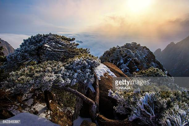Huangshan Mountain in winter season