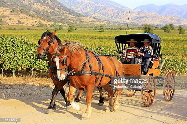 Huasos and Horse Cart Chile Winelands