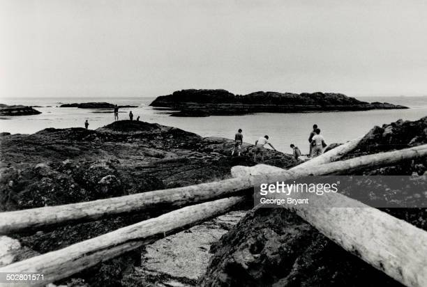 Huge driftwood logs are tossed ashore on a beach at Pacific Rim National Park where as the writer says the waves have come 5000 miles to slam the...