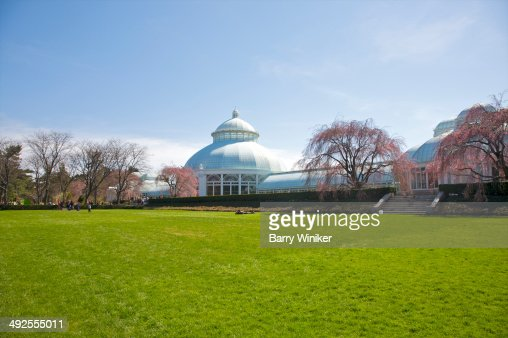 Huge expanse of green grass under white building