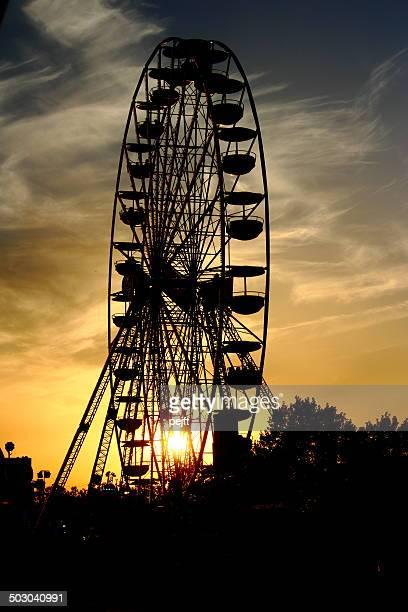 Huge ferris wheel at sunset