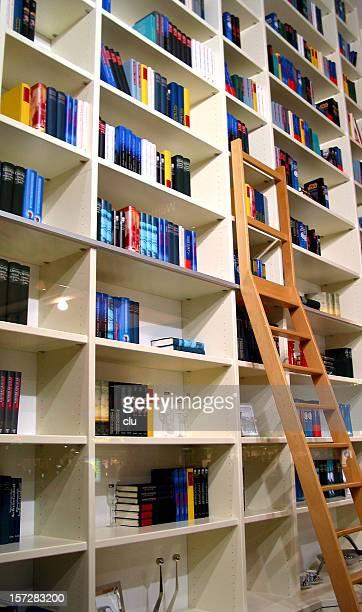 Große Bibliothek zu Hause weiter bis zur Decke