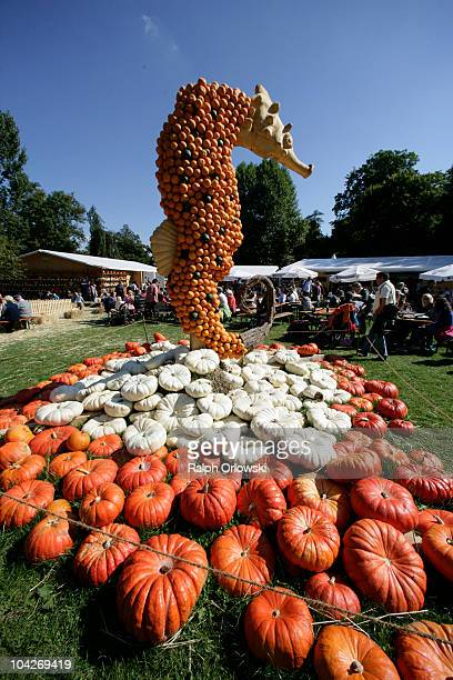 A huge seahorse arranged by pumpkins stands at the World's largest pumpkin exibition at Ludwigsburg Castle on September 19 2010 in Ludwigsburg...