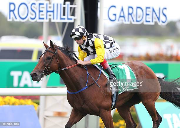 Hugh Bowman rides Shamalia to win race 1 The TAB Birthday Card Stakes during Golden Slipper Day at Rosehill Gardens on March 21 2015 in Sydney...