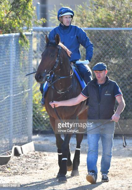 Hugh Bowman riding Marmelo returns to stable after a track gallop at Werribee Racecourse on October 17 2017 in Melbourne Australia