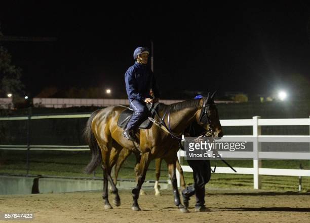 Hugh Bowman riding Winx after galloping on the steeple grass during a Trackwork Session at Flemington Racecourse on October 5 2017 in Melbourne...