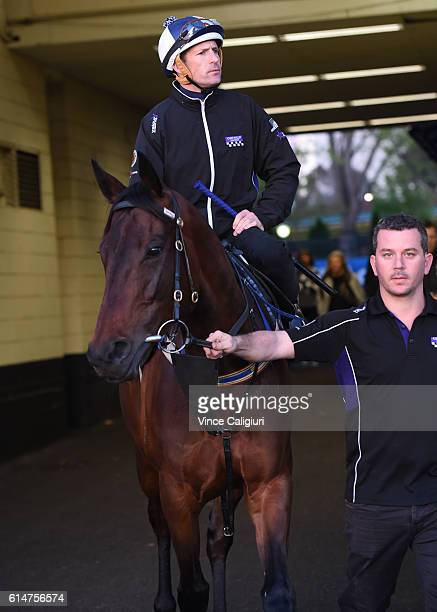 Hugh Bowman riding Winx before a trackwork session at Moonee Valley Racecourse on October 15 2016 in Melbourne Australia Winx is the short price...