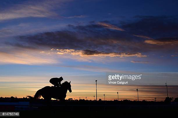 Hugh Bowman riding Winx during a trackwork session at Moonee Valley Racecourse on October 15 2016 in Melbourne Australia Winx is the short price...